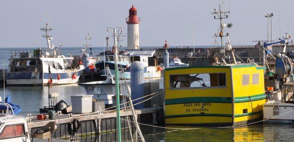 Port de la Cotinère, la pêche professionnelle sur l'île d'Oléron
