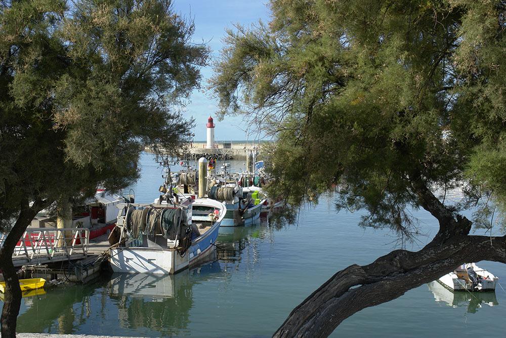Balade le long du port de la Cotinière