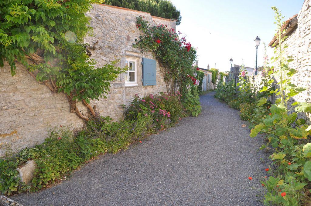 Sauzelle île d'Oléron, une ruelle typique
