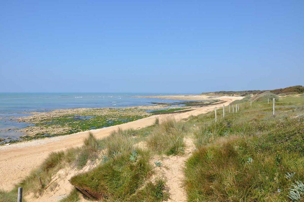 camping les Pins, la Cotinière, île d'Oléron, dune, bord de mer