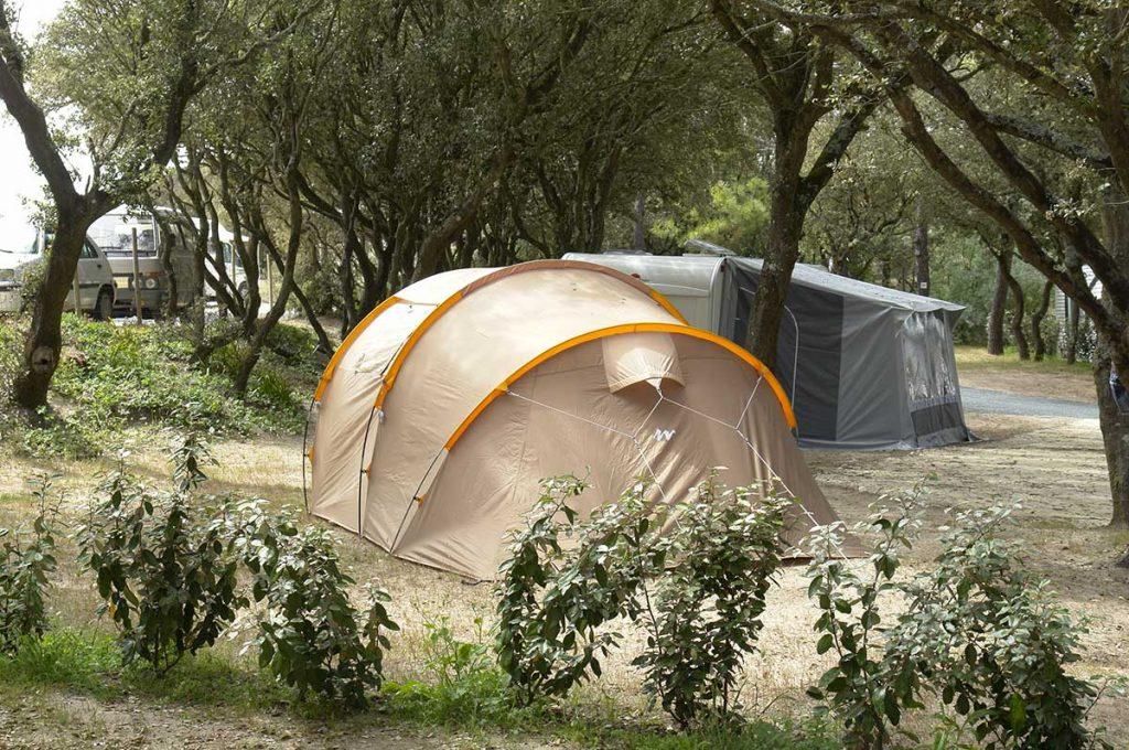 camping les Pins, la Cotinière, Oléron, emplacement tente