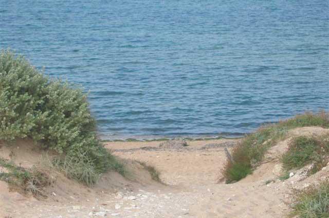 Camping municipal la Fauche-Prère, Oléron, accès direct à la mer
