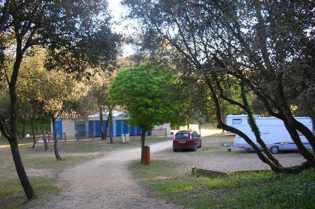 Camping municipal St Pierre d'Oléron, camping ombragé