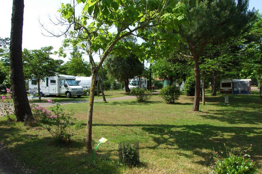 Camping le Sous Bois, île d'Oléron, emplacement ombragé