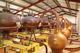 Les Vignerons d'Oléron, distillerie
