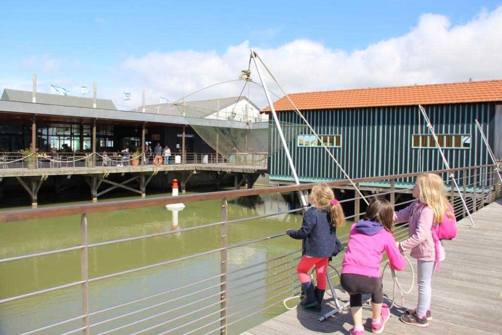 Cité de l'Huître, animations enfants, pêche au carrelet