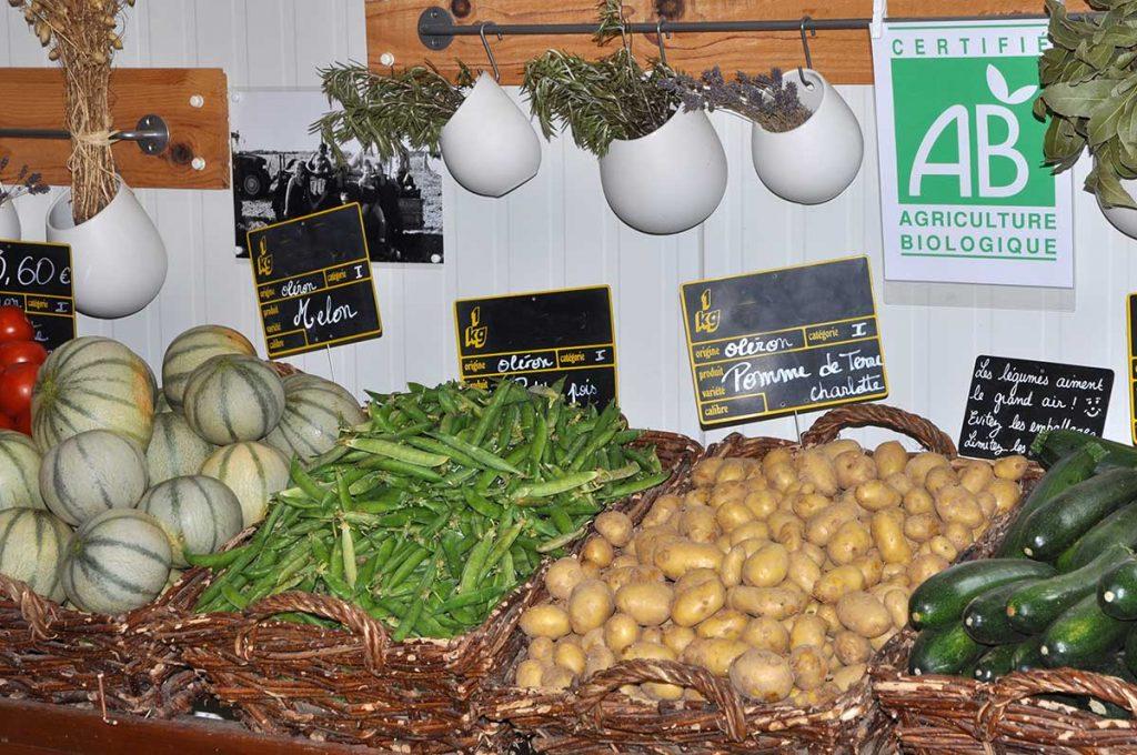 Légumes bio, île d'Oléron, le Jardin de la Josière