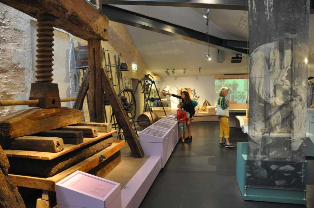 Musée ile d'Oléron, la viticulture