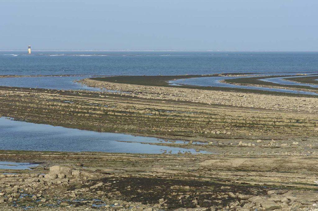 Chassiron, l'estran à marée basse