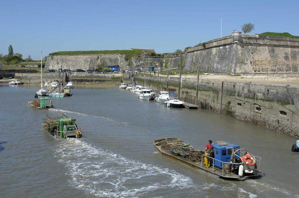 Le Port du Château d'Oléron, les ostréiculteurs rentrent après la marée