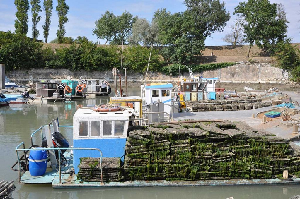 Le Port du Château d'Oléron, embarcations ostréicoles appelées à Marenne-Oléron : pontons