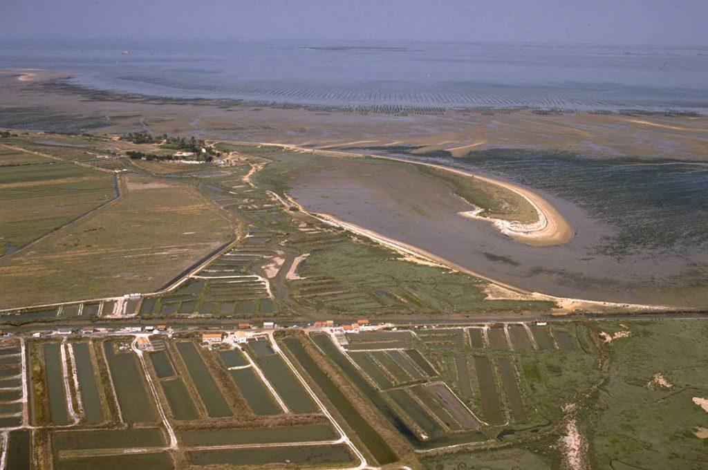 Ostréiculture Marennes-Oléron, chenal d'Arceau, marée basse