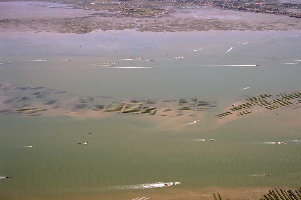 Ostréiculture Marennes-Oléron, parcs en mer, marée montante