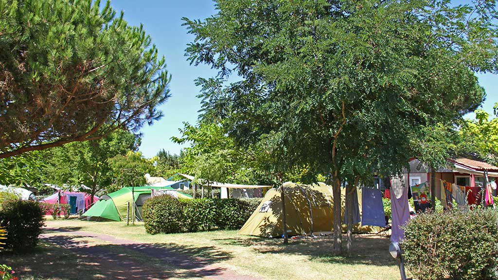 Camping la Brande, Oléron, emplacements tentes arborés