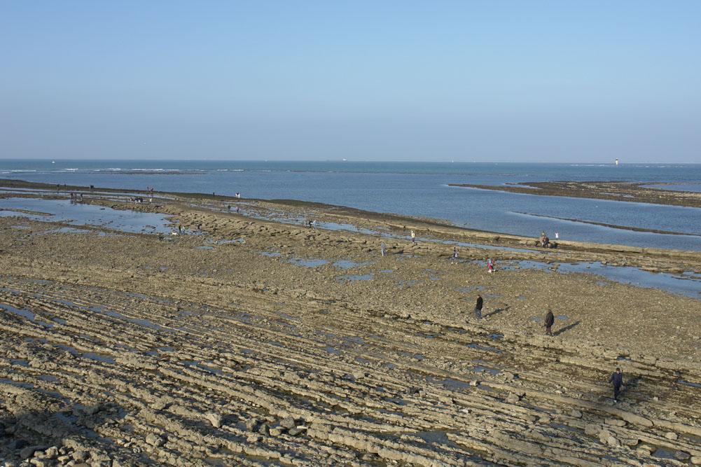 Chassiron, Ile d'Oléron, estran rocheux à marée basse