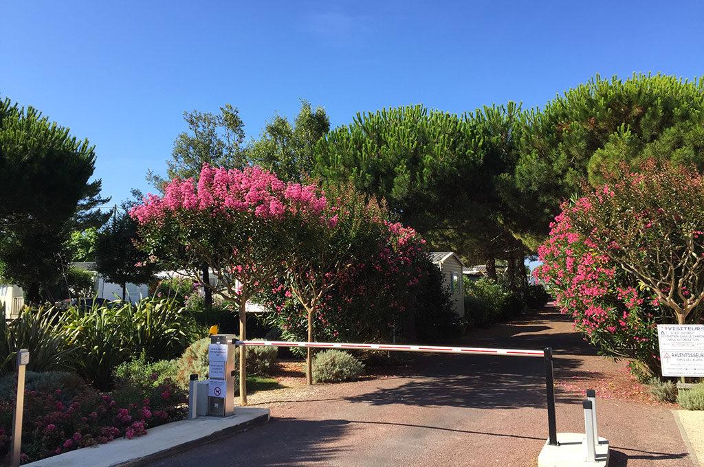 Camping la Boulinière, île d'Oléron, entrée fleurie