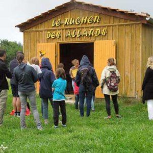 Visite du rucher des Allards. Ile d'Oléron