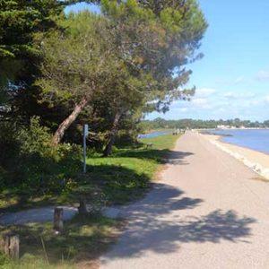 Maison de la nature de l'île d'Oléron, marais des Bris