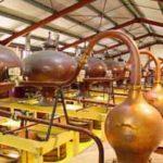 Vignerons d'Oléron, visite de la distillerie
