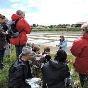 Balade à thème au Port des salines - Ile d'Oléron - Du marais à l'assiette