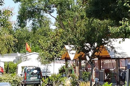 Les Floralies, Oléron, camping arboré