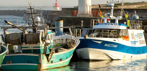 Les Pêcheries de La Cotinière.