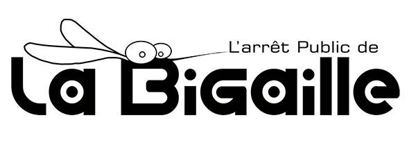 Bar associatif le Bigaille, ateliers et concerts