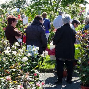 Fête des jardins à St-Trojan, île d'Oléron
