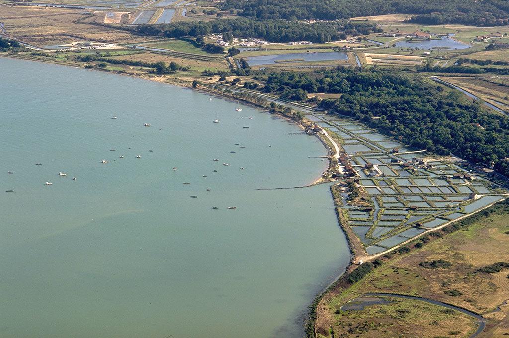 Site ostréicole de Fort Royer île d'Oléron