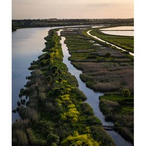 Les zones humides et le changement climatique, Charente-Maritime