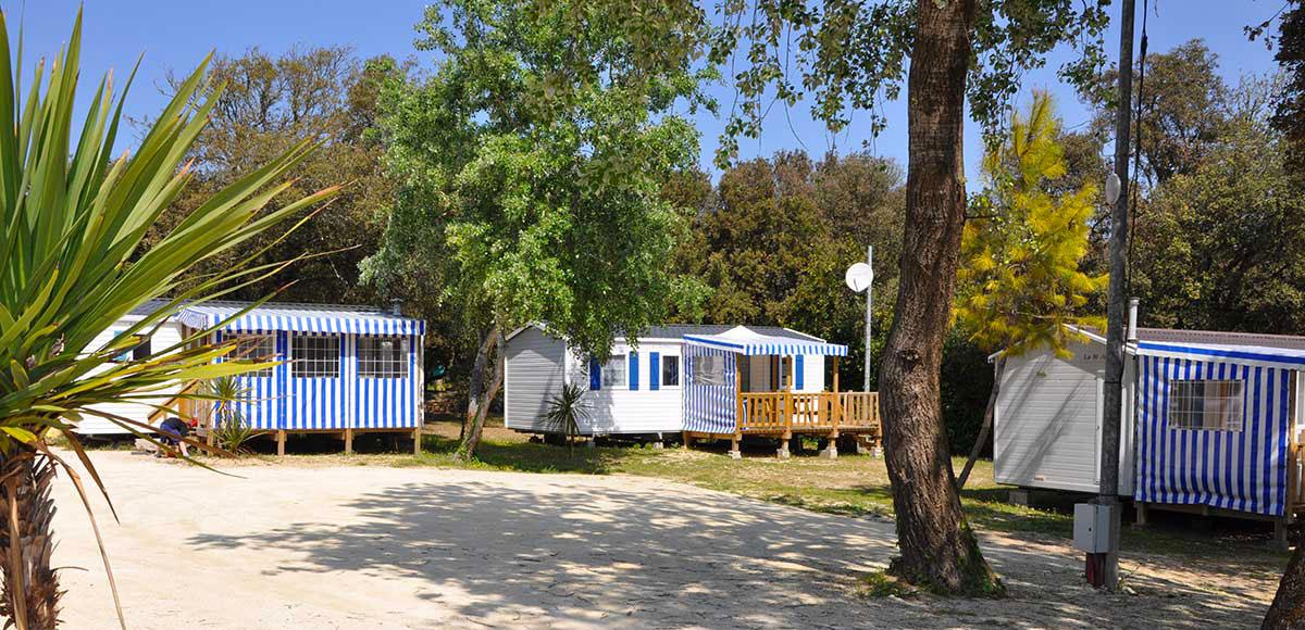 Camping les Pins, la Cotinière, île d'Oléron