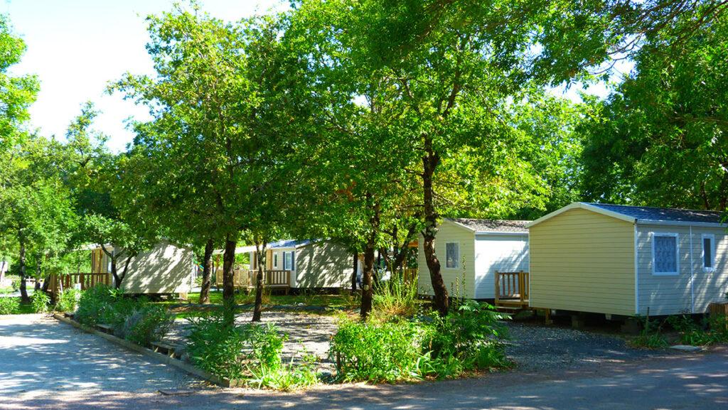 Camping à Oléron, ombragé
