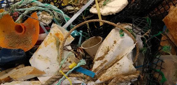Mobilisation générale contre les déchets marins sur Oléron