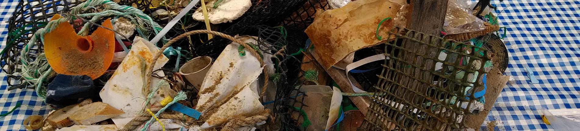 Mobilisation générale contre les déchets marins île d'Oléron