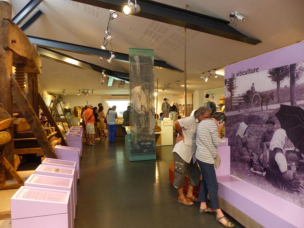Musée de l'île d'Oléron, patrimoine et visiteurs