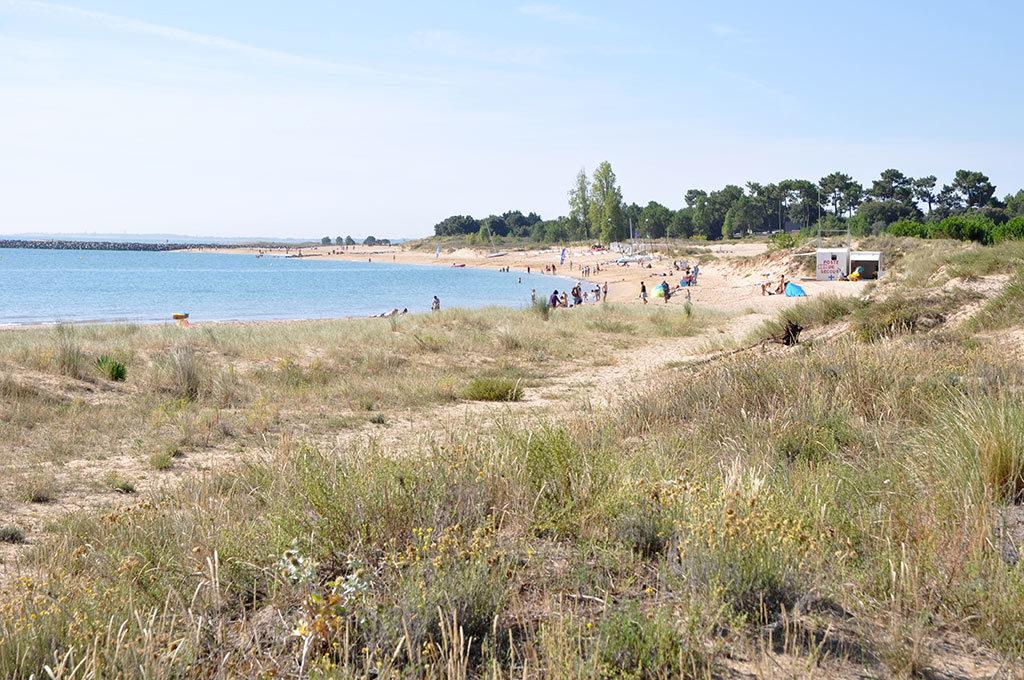 Boyardville, Oléron, plage er dune