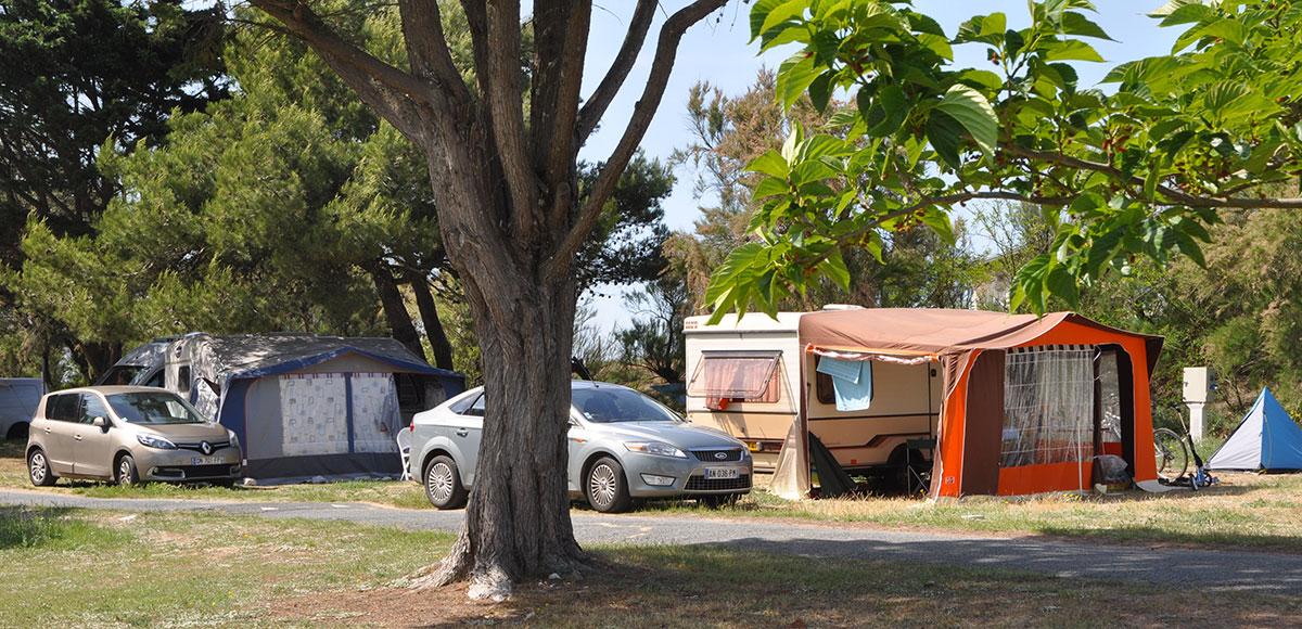 camping municipal de St Denis d'Oléron