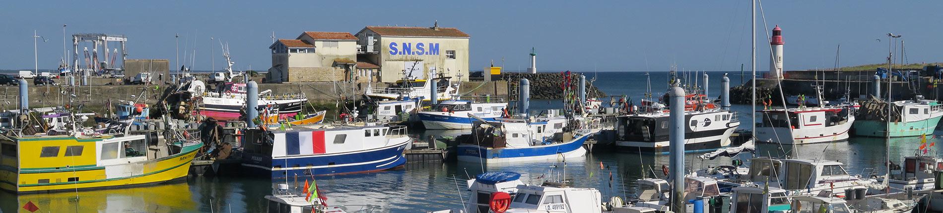 Economie Charente Maritime port de la Cotinière