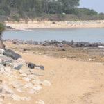 Plage des Boulassiers, île d'Oléron