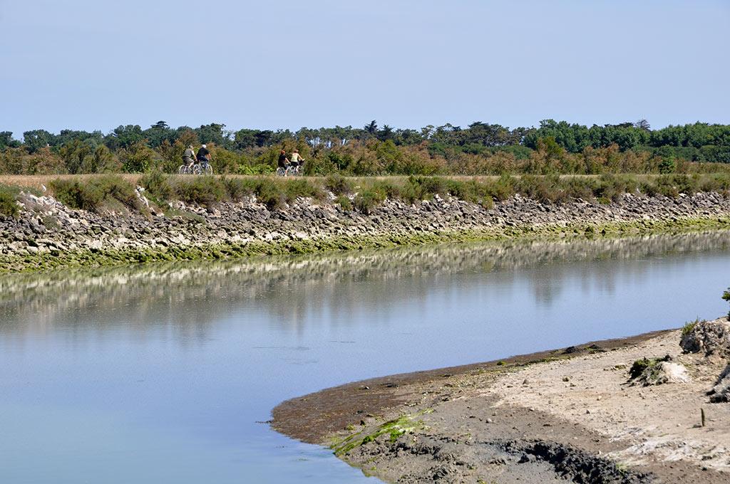 Chenal du Douhet au port de l'Ileau