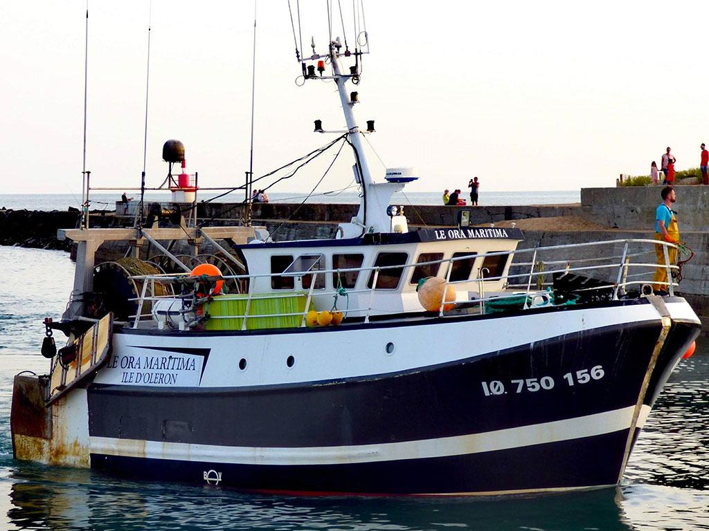 Vente directe de poissons sur Oléron