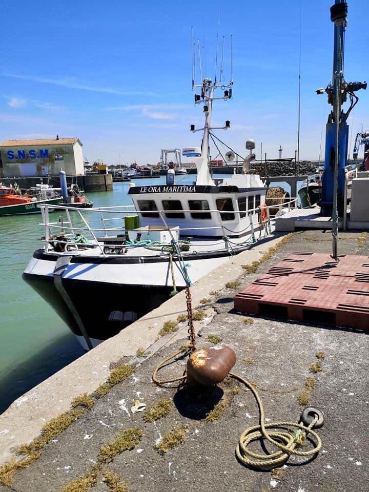 Ora Maritima - Port de la Cotinière Oléron