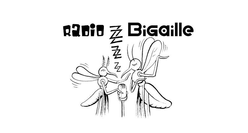Radio Bigaille Marennes Oléron