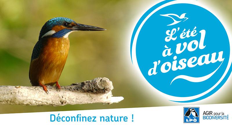 L'état à vol d'oiseau en Charente-Maritime