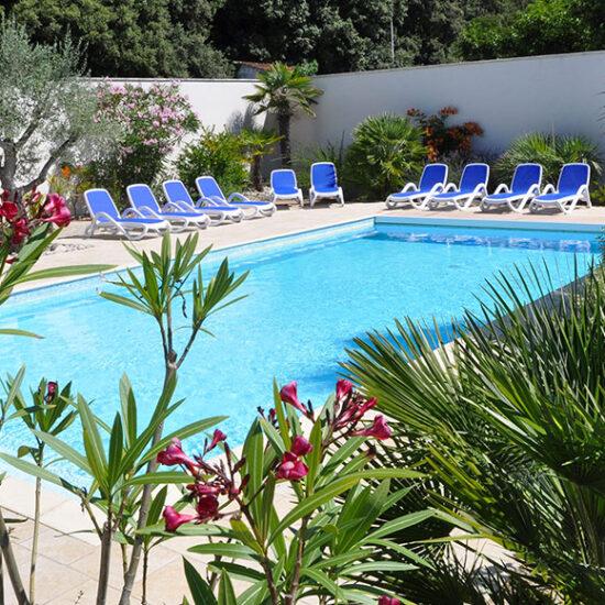 Location l'Abri Côtier à Domino, la piscine