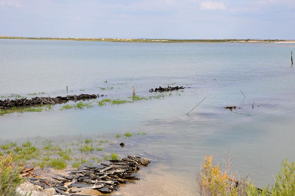 Site ostréicole de Fort Royer