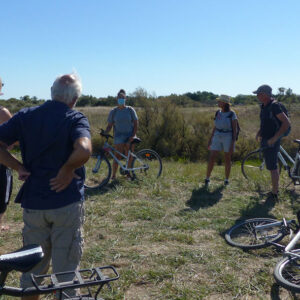 Balade à vélo «Histoire et Marais»